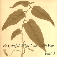 Be Careful What You Wish For–Part 3 Now Posted